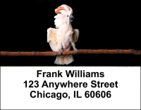 Cockatoos Address Labels | LBANI-42