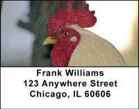 Chickens Address Labels | LBANI-53