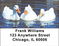 Duck Lovers Address Labels | LBANI-66