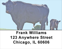 Black Angus Address Labels | LBANJ-29