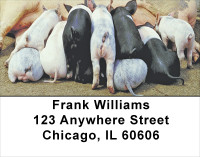 More Pig Address Labels | LBANJ-58