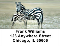 Zebra & Babies Address Labels | LBANJ-90