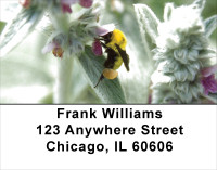 Bees On Flowers Address Labels | LBANK-18