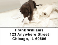 Takin Care Of Business Address Labels | LBBBB-09