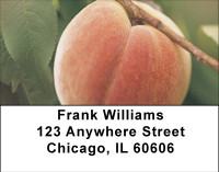 Georgia Peaches Address Labels | LBBBF-55
