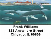 Whales and Lighthouse Address Labels by David Dunleavy | LBDUN-03
