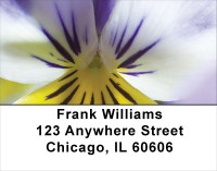 Playful Pansies Address Labels | LBFLO-37