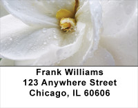 Yellow And White Florals Address Labels | LBFLO-55