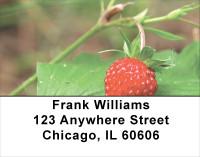 Bloomin' Strawberries Address Labels