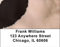 Holy Cow Address Labels | LBGEO-71