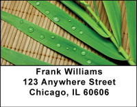 Bamboo Address Labels | LBNAT-18