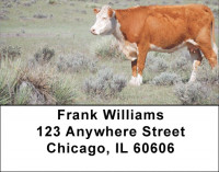 Cattle On Western Prairie Address Labels | LBQBB-09