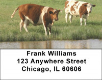 Grazing Cattle In Tall Grass Address Labels | LBQBB-12