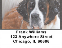 Saint Bernards Address Labels | LBQBB-91