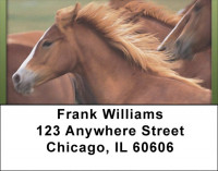 For Horse Lovers Address Labels | LBQBC-63