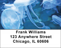 Jellyfish Jungle Address Labels | LBQBC-82