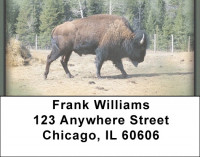 Buffalo Address Labels | LBZANI-49