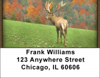 Deer in Four Seasons Address Labels | LBZANI-59