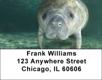 Manatee Address Labels | LBZANJ-41
