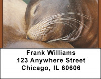 Sleeping Animals Address Labels | LBZANJ-96