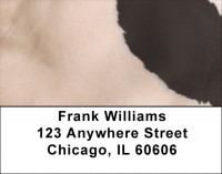 Holy Cow Address Labels | LBZGEO-71