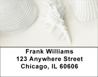 Perfectly White Shells Address Labels | LBZNAT-61