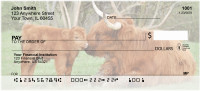 Highland Cow With Newborn Calf Personal Checks | QBB-13
