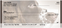 English Springer Spaniels Personal Checks | QBB-53