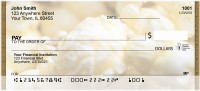 Popcorn Planet Personal Checks