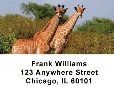 Safari Wildlife Address Labels | LBANI-03