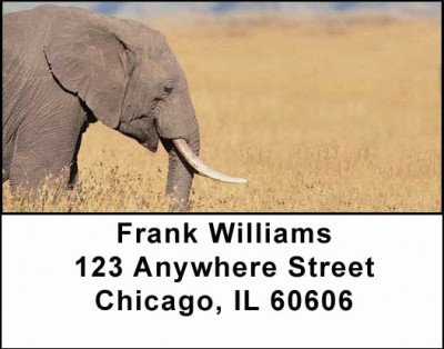 Elephants Address Labels | LBANI-22