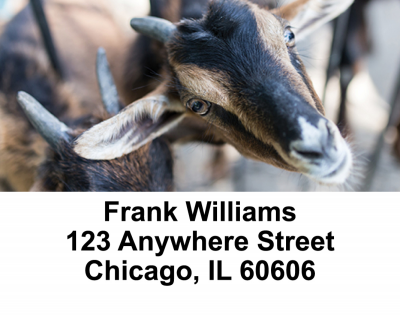 Goats Address Labels | LBANI-28