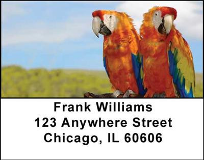 Parrots Address Labels | LBANI-41