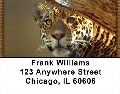 Leopard Watch Address Labels | LBQBC-96