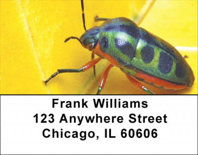 Beetles Address Labels | LBZANI-45
