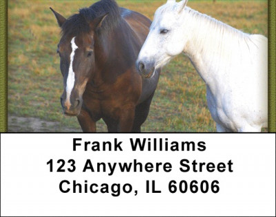 Horses Address Labels | LBZANJ-33