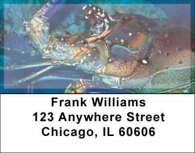 Lobsters In Ocean Bottom Address Labels | LBZANJ-40