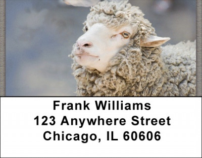 Counting Sheep Address Labels | LBZANJ-65