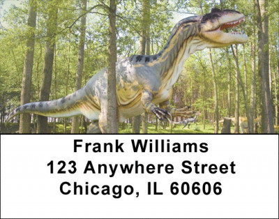 Dino Walk In The Park Address Labels | LBZANJ-98