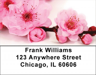 Blossoms In Pink and Blue Address Labels | LBZFLO-06