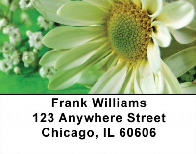 Daisies On Green Address Labels | LBZFLO-14