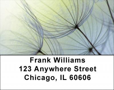 Dandelion Address Labels | LBZFLO-15