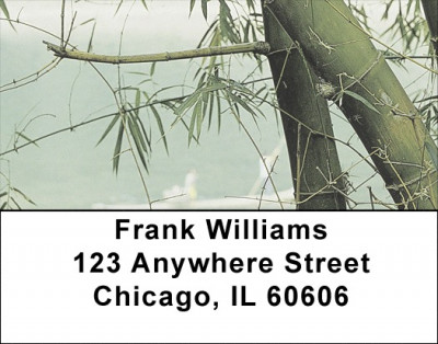 Through The Bamboo Address Labels | LBZNAT-37