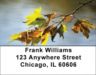 Falling Leaves On Water Address Labels | LBZSCE-64