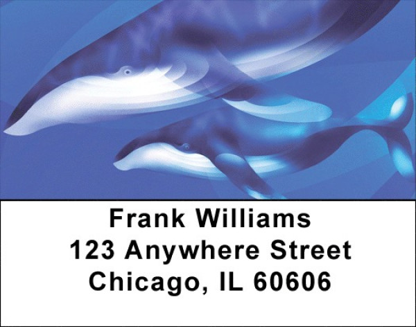 Whale Wonders Address Labels | LBQBC-48