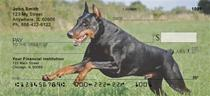 Dobermans Checks