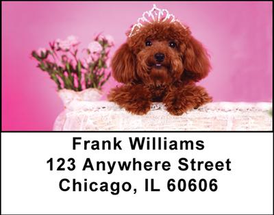 Toy Poodles Address Labels - 2