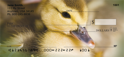 Ducklings in Spring Personal Checks - 3