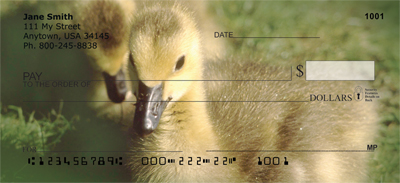 Ducklings in Spring Personal Checks - 4
