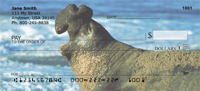 Elephant Seals and Sea Lions Personal Checks - 1